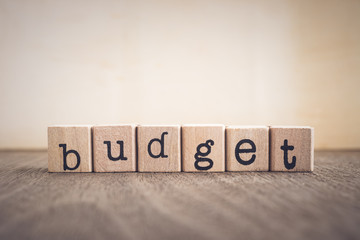 The word Budget, vintage blank space background.