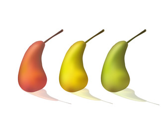 Set of pears. Green, yellow, red. Ripe fruit Vector illustration Healthy diet