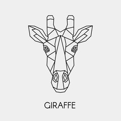 Vector illustration. Abstract polygon the head of a giraffe. Geometric line African animal.