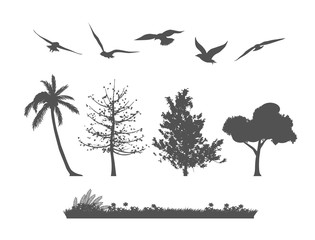 Silhouette of forest tree, birds and grasses