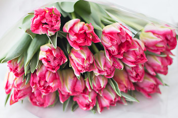 tulips bouquet of pink spring flowers