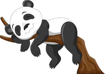 Cute baby panda sleeping on a branch