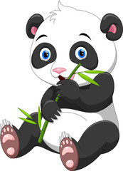 Cute baby panda with bamboo isolated on white background