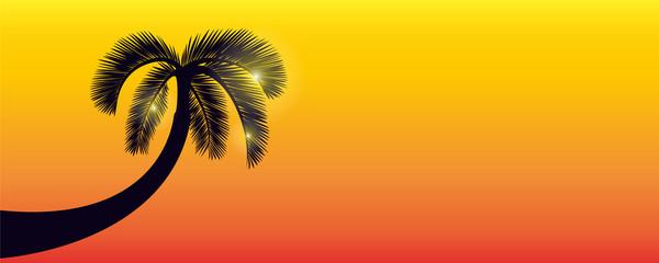palme abend hintergrund