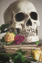 Still life with dry roses and skull on vintage book
