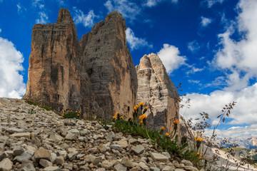 Wunderschöner Blick auf die Drei Zinnen in Süd Tirol, Dolomiten, Italien_005