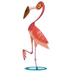Flamingo bird cartoon vector illustration isolated on white background.