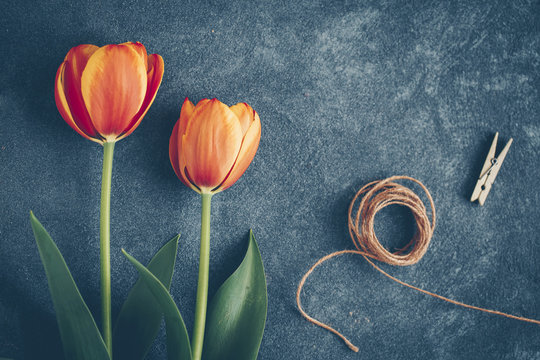 Two tulips, string and clothes peg