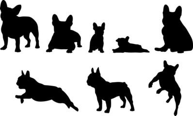 French Bulldog - Silhouetten Fotobehang