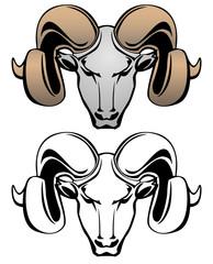 Ram Head Vector Graphic Illustration