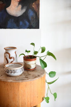 Potted houseplant on end table