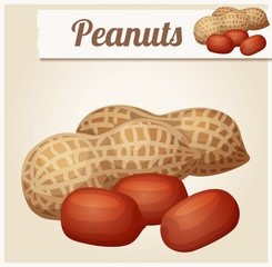 Peanuts. Detailed Vector Icon