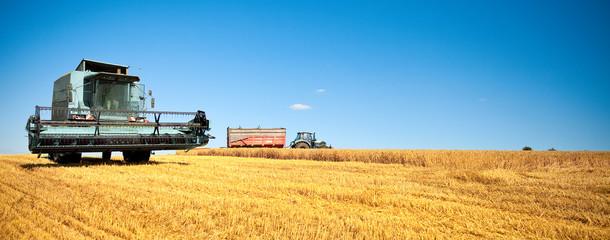 Moisson dans les champs en été > France
