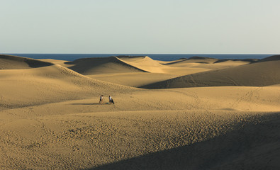 Group of people doing a photo shoot in middle of sand dunes desert at sunset in Maspalomas, Spain. Splendid landscape in Gran Canaria landmark by the sea at twilight. Photo session at golden hour