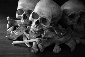 Awesome pile of three skull and bone on dark background in the morgue, Still Life style,