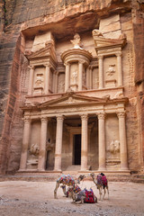camels in front of tresurement of Petra in Jordan