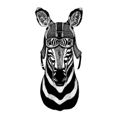 Zebra, horse Hipster animal wearing motorycle helmet. Image for kindergarten children clothing, kids. T-shirt, tattoo, emblem, badge, logo, patch