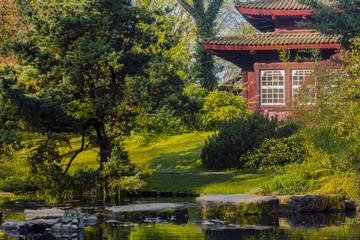Japanese style tea house in garden during spribg