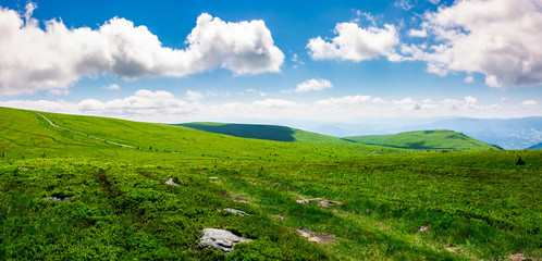 beautiful panoramic mountainous landscape. lovely summer scenery of grassy hills under the  blue sky with clouds