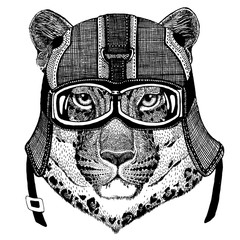 Jaguar, leopard Animal wearing motorycle helmet. Image for kindergarten children clothing, kids. T-shirt, tattoo, emblem, badge, logo, patch