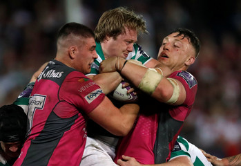 European Challenge Cup Semi Final - Gloucester Rugby v Newcastle Falcons