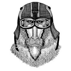 Monkey, baboon, dog-ape, ape Hipster animal wearing motorycle helmet. Image for kindergarten children clothing, kids. T-shirt, tattoo, emblem, badge, logo, patch
