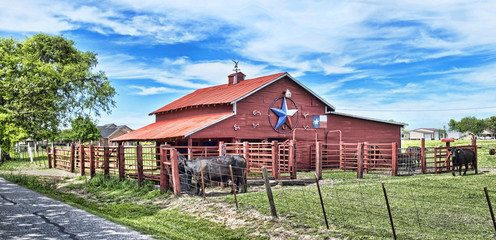 Old Red Barn with cattle..
