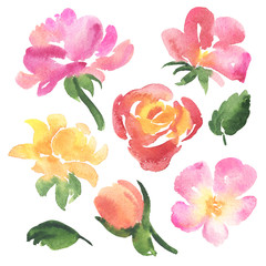 Set of sketch watercolor rose flowers and leaves