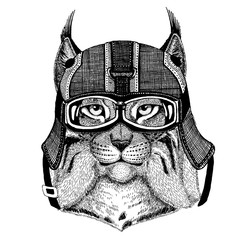 Trot, bobcat, lynx Hipster animal wearing motorycle helmet. Image for kindergarten children clothing, kids. T-shirt, tattoo, emblem, badge, logo, patch