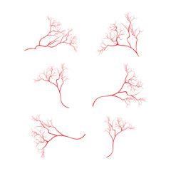Human eye veins, vessel, blood arteries isolated on white vector. Set of blood veins, image of health red veins illustration.