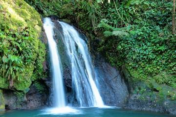 La cascade aux écrevisses en Guadeloupe