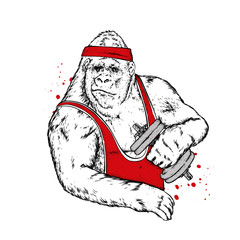 Big gorilla in sports clothes. Monkey with dumbbells. Vector illustration.