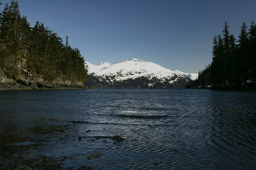 View across Passage Canal from Emerald Cove, Whittier, Alaska