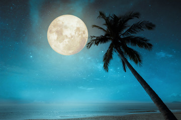 Wall Mural - Beautiful fantasy tropical beach with star in night skies, full moon - Retro style artwork with vintage color tone.