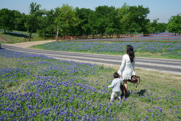 Mother and son walking along Bluebonnet Trail of wildflowers in North Texas, USA