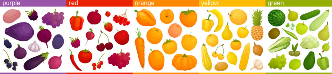 Set of multicolored fruits and vegetables assorted by colors. Vector illustration Food of different colors. Edible rainbow.