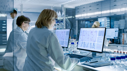 Fototapeta Female and Male Scientists Working on their Computers In Big Modern Laboratory. Various Shelves with Beakers, Chemicals and Different Technical Equipment is Visible. obraz