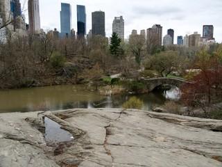 Central Park et building