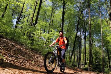 Mountainbiker im sommerlichen Wald