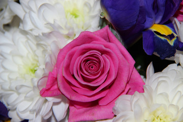 Bouquet of flowers. Roses, chrysanthemums, irises