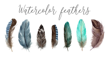 watercolor set illustrations feathers. hand painting isolated elements.