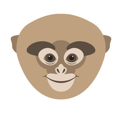 monkey  face head vector illustration flat style front