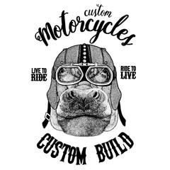 Hippo, Hippopotamus, behemoth, river-horse Biker, motorcycle animal. Hand drawn image for tattoo, emblem, badge, logo, patch, t-shirt
