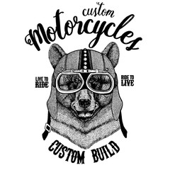 Black bear Biker, motorcycle animal. Hand drawn image for tattoo, emblem, badge, logo, patch, t-shirt