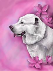 Beautiful dog art by raskat