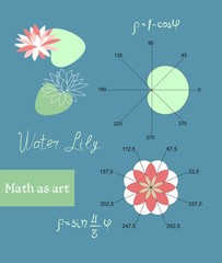 Image of a water lily with the help of mathematical functions. Graphs in the form of a leaf and a flower. Mathematics as art. A manual for schoolchildren and students in vector.