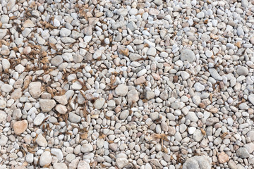 shore with stones