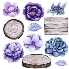 Rustic Set of Watercolor Wood, Succulent and Flowers
