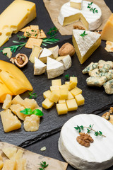various types of cheese - brie, camembert, roquefort and cheddar on concrete