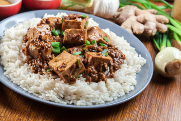 Mapo Tofu - sichuan spicy dish served with rice